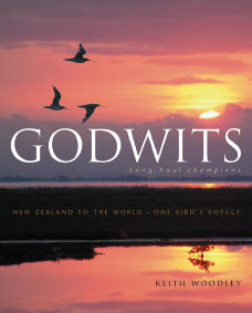 Godwits – by Keith Woodley