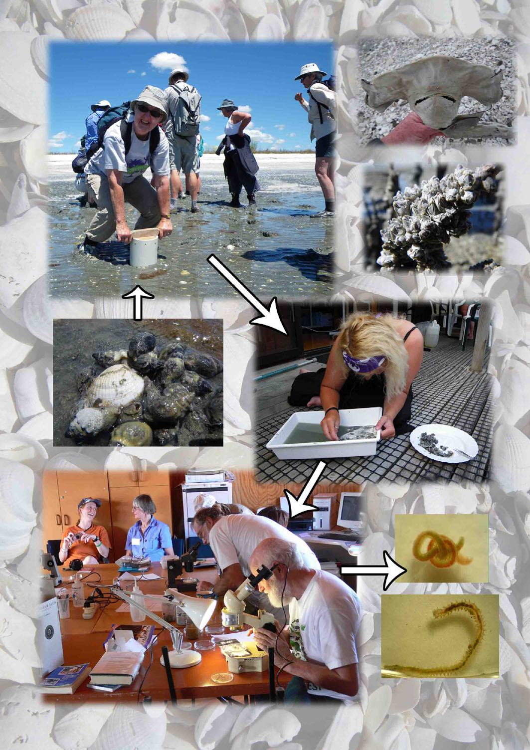 Join us for our next Field Course January 2012