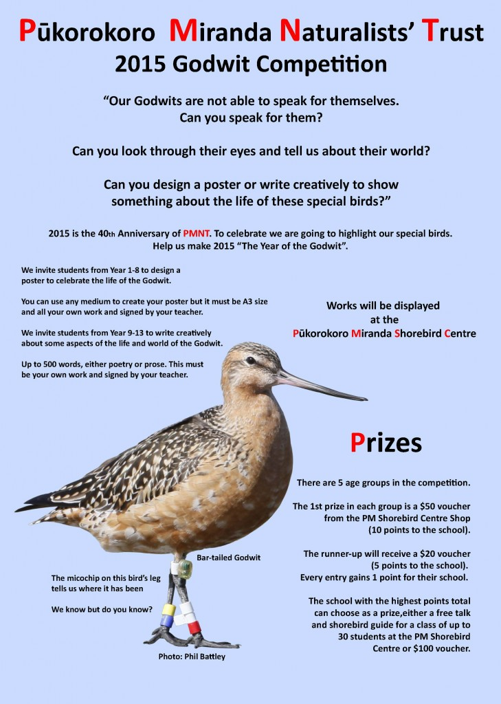 Godwit Competition Front Final