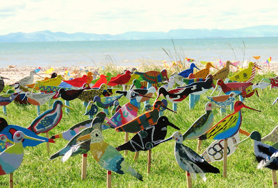 A FLOCK OF 520 BIRDS AT KAIAUA