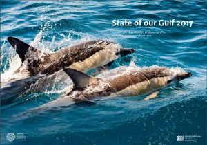 State of our Gulf 2017 - Report cover